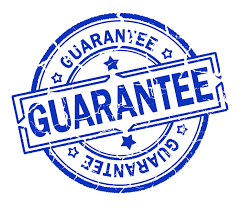 Investor Lead Guarantee